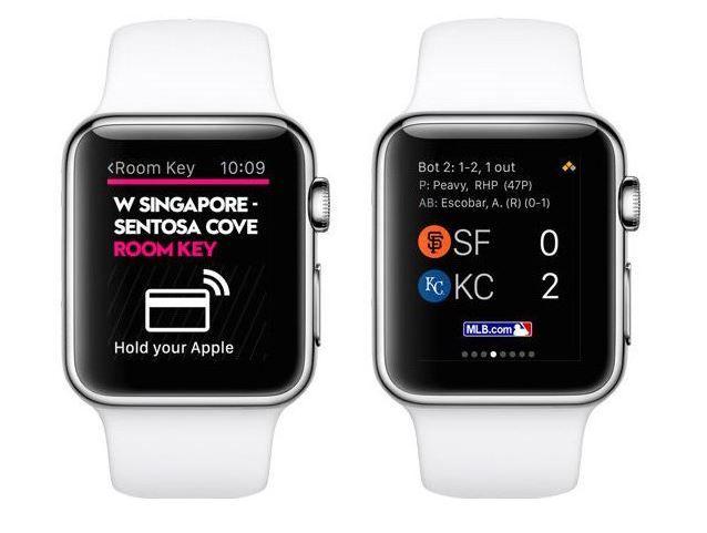Apple Watch developers.JPG